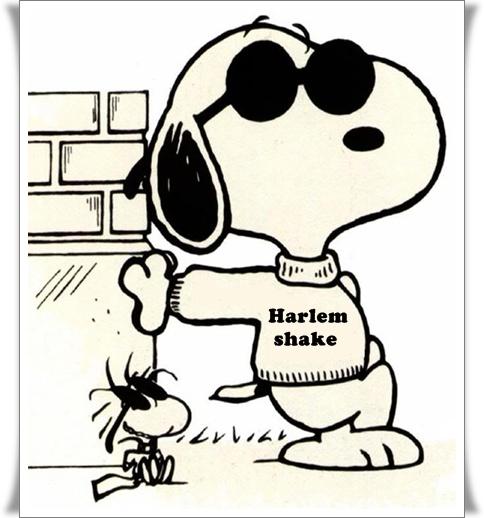 Snoopy Harlem (blog Don Marko M)