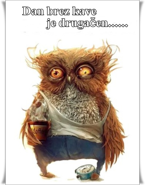 Brez kave (blog Don Marko M)