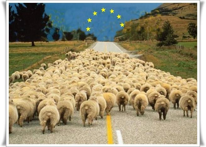 Viva EU (blog Don Marko M)