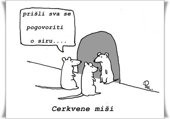 Cerkvene miši (blog Don Marko M)