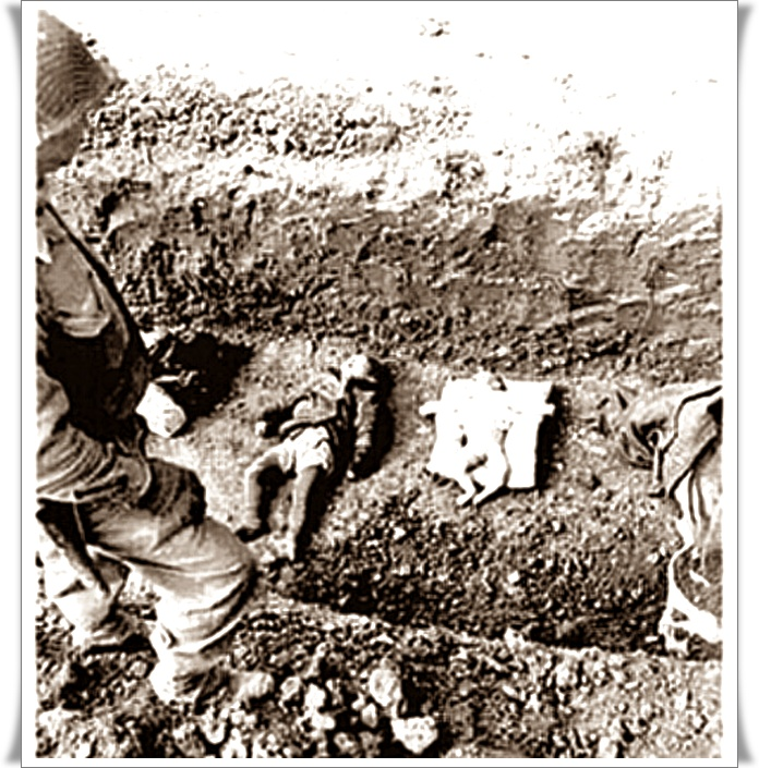 Holocaust nikoli več 02 (blog Don Marko M)