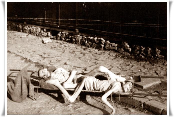 Holocaust nikoli več 05 (blog Don Marko M)