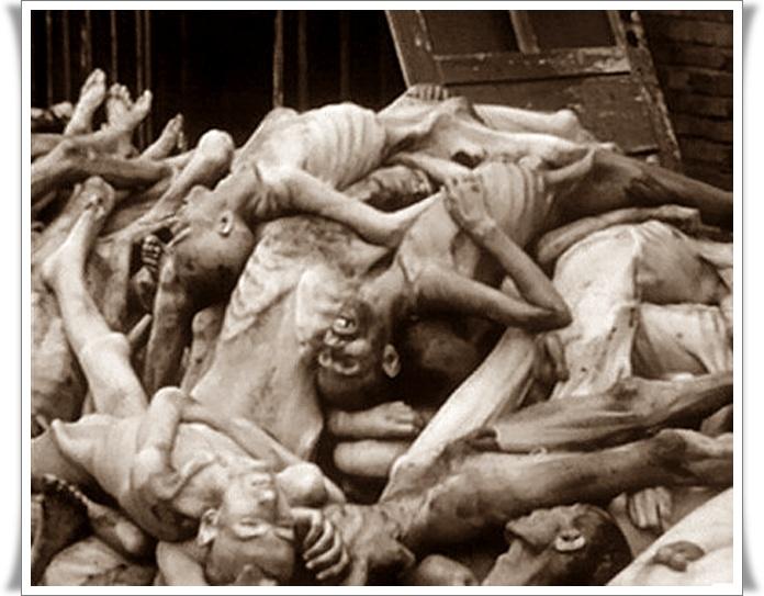 Holocaust nikoli več 07 (blog Don Marko M)
