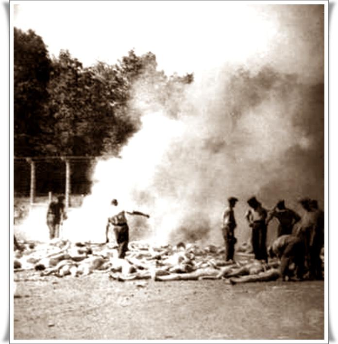Holocaust nikoli več 09 (blog Don Marko M)