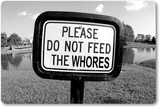 Nahraniti živali (blog Don Marko M)