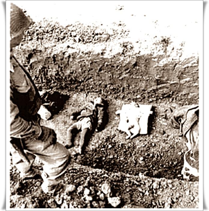 Holocaust-nikoli-več-02-blog-Don-Marko-M