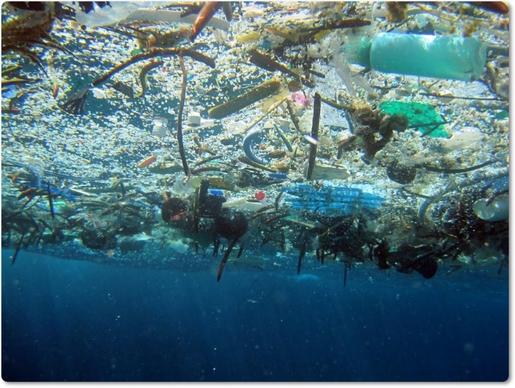 Smeti morja 2(blog Don Marko M)