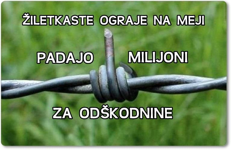 ograja-ziletke-blog-don-marko-m
